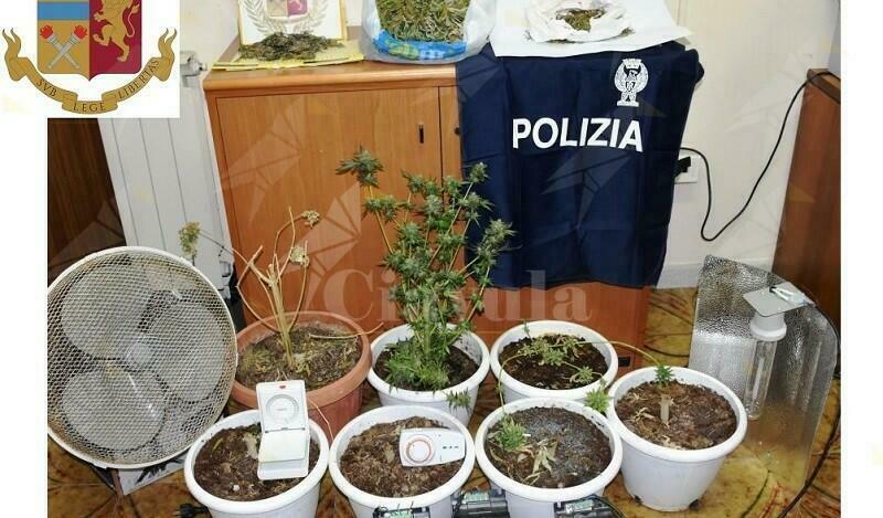 Coltivano marijuana in casa, in manette due fratelli di cui uno minorenne