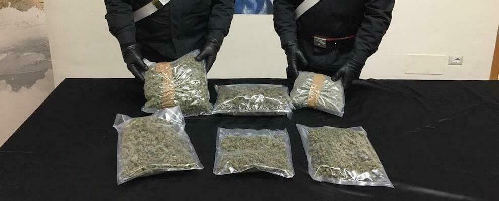 Trovati e sequestrati dai carabinieri oltre 2,5kg di marijuana