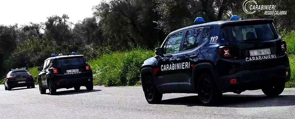 Controlli dei carabinieri nelle aziende agricole della Piana, sanzioni per 14 mila euro